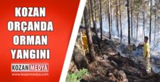 Kozan Orçan Mahallesinde Orman Yangını