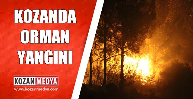 Kozan Sıralif Mevkiinde Orman Yangını