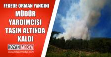 Fekede Orman Yangını Müdür Yardımcısı Yuvarlanan Taşla Yaralandı