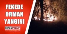 Fekede Yine Orman Yangını