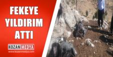 Feke'de Yıldırım Attı 75 Küçükbaş Hayvan Telef Oldu