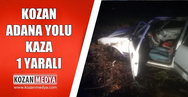 Kozan Adana Yolunda Araç Tarlaya Uçtu 1 Yaralı
