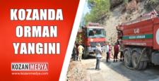 Kozan'da Orman Yangını 2 Dönümlük Kızılçam Ormanı Yandı