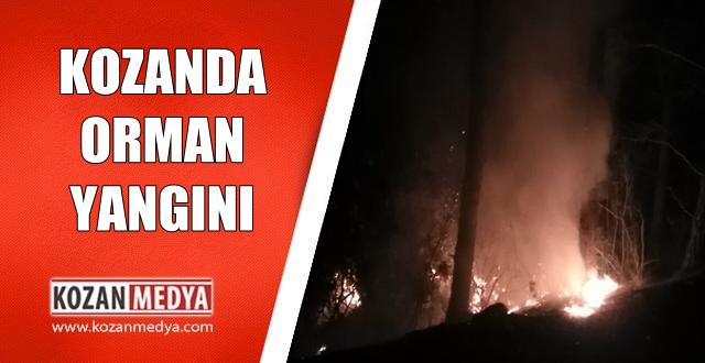 Kozan'da Ormanlık Alanda Yangın Büyümeden Söndürüldü