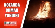 Kozanda Orman Yangını 5 Dönüm Kızılçam Kül Oldu