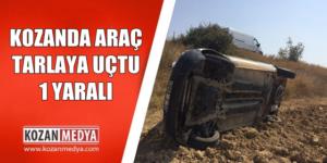Kozan'da Araç Tarlaya Uçtu 1 Yaralı