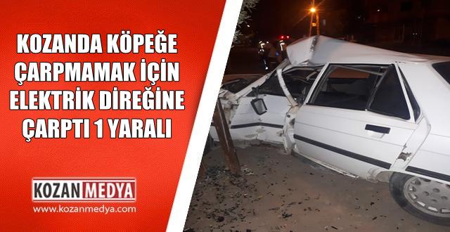 Kozan'da Köpeğe Çarpmamak İçin Elektrik Direğine Çarptı 1 Yaralı