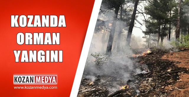 Kozan da Orman Yangını 1 Hektarlık Alan Yandı