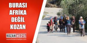 Burası Afrika Değil Burası Adana Kozan