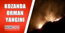 Kozan'da Orman Yangını