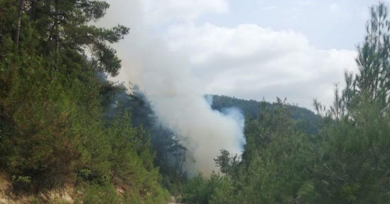 Kozanda Kuyubeli Mahalesinde Çıkan Orman Yangını Söndürüldü