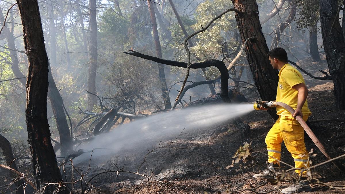 Kozanda Orman Yangını