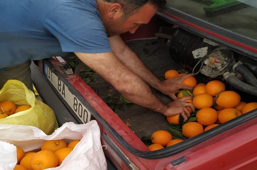 Kozan Bucak'ta Portakal Hırsızına Suçüstü