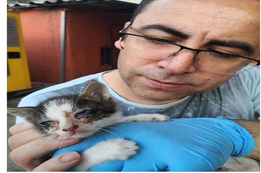 Kozan İlçe Emniyet Müdürü Sokak Hayvanlarına Kol Kanat Geriyor
